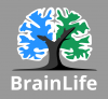 Graphic for brainlife.io