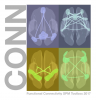 Graphic for CONN : functional connectivity toolbox